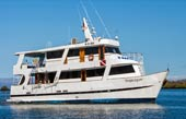 Pinguino diving cruise